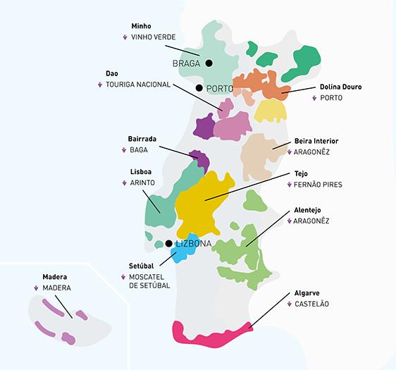 Portugalia tropem wina - Galeria