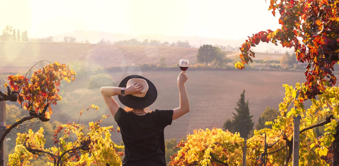 Wina wkolorach jesieni